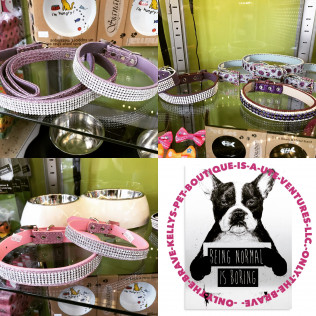 IF YOUR DOG NEEDS SOME BLING
